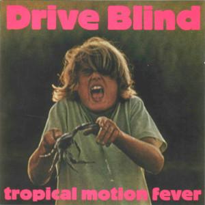 Drive Blind : les fous du volant !